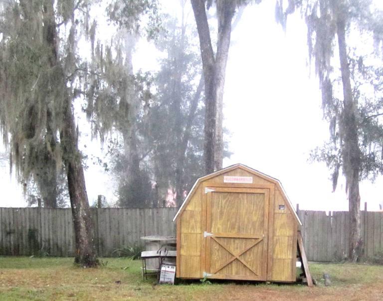 buc's barn